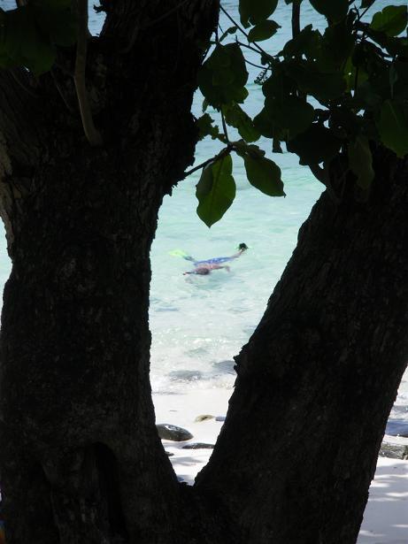 コーラル島'09.05-47a.JPG
